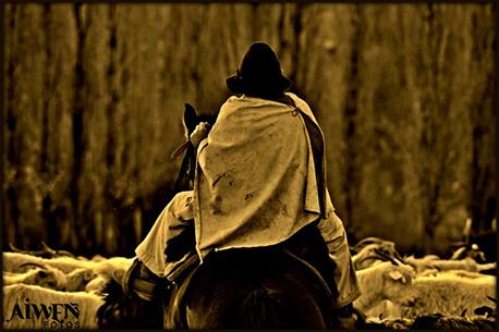lucas campomori es nacido y criado en la localidad de chos malal desde pequeo lo apasion la fotografa que con el correr del tiempo se orient hacia