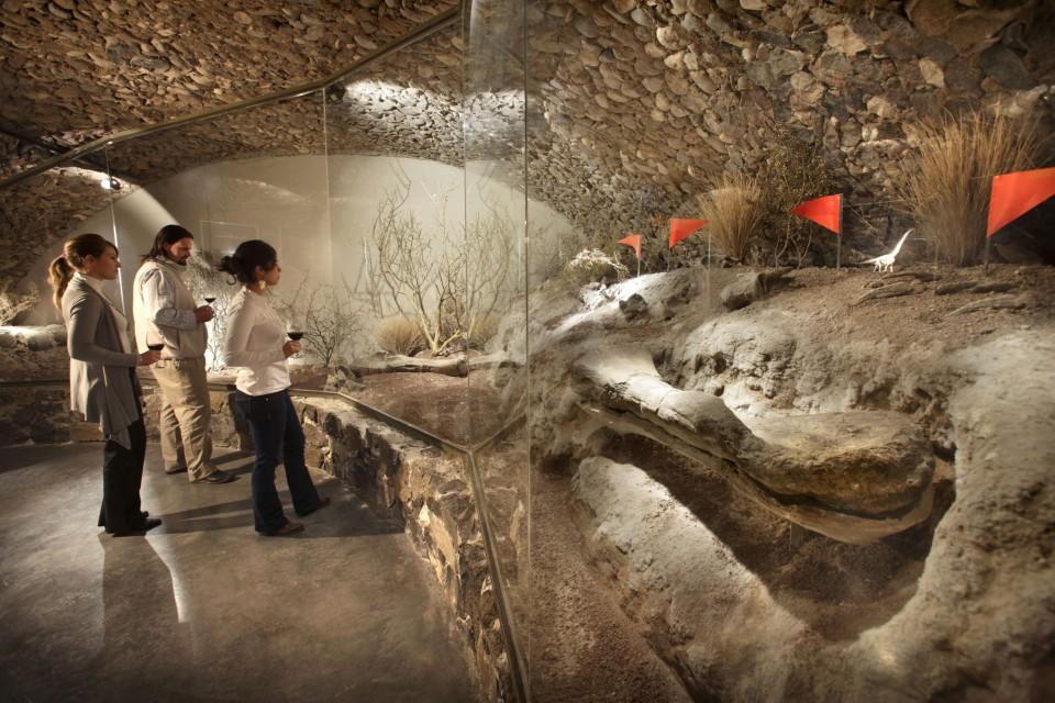 Sitio donde se exhibe la pieza fósil