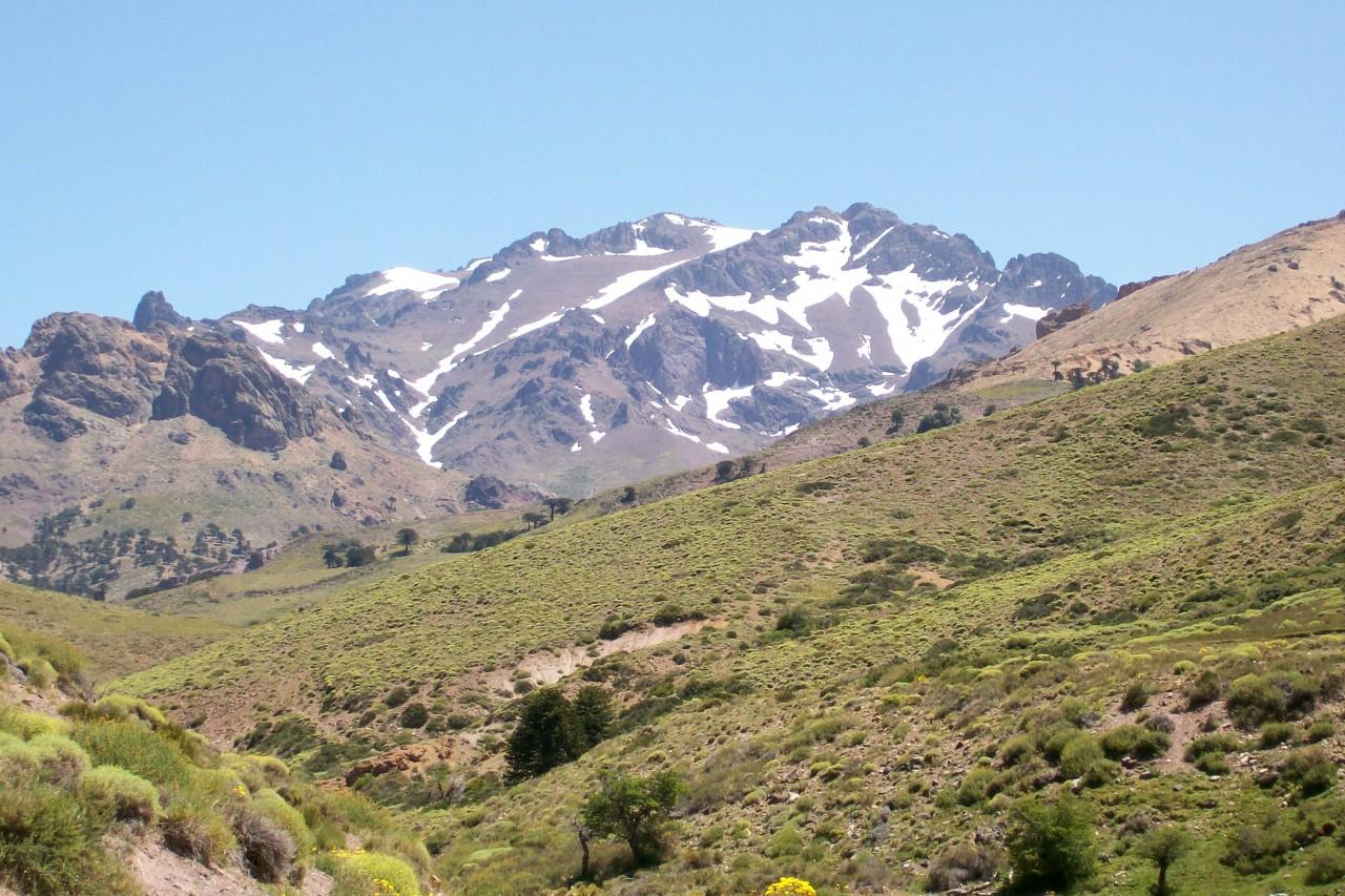 Cerro Chahil (2830 m.s.n.m.)