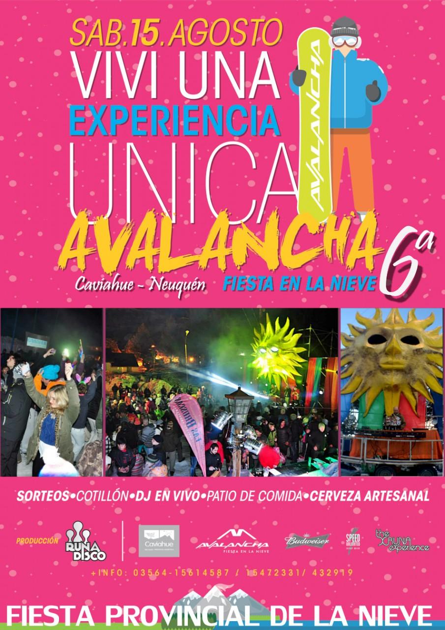 Avalancha Afiche 2015