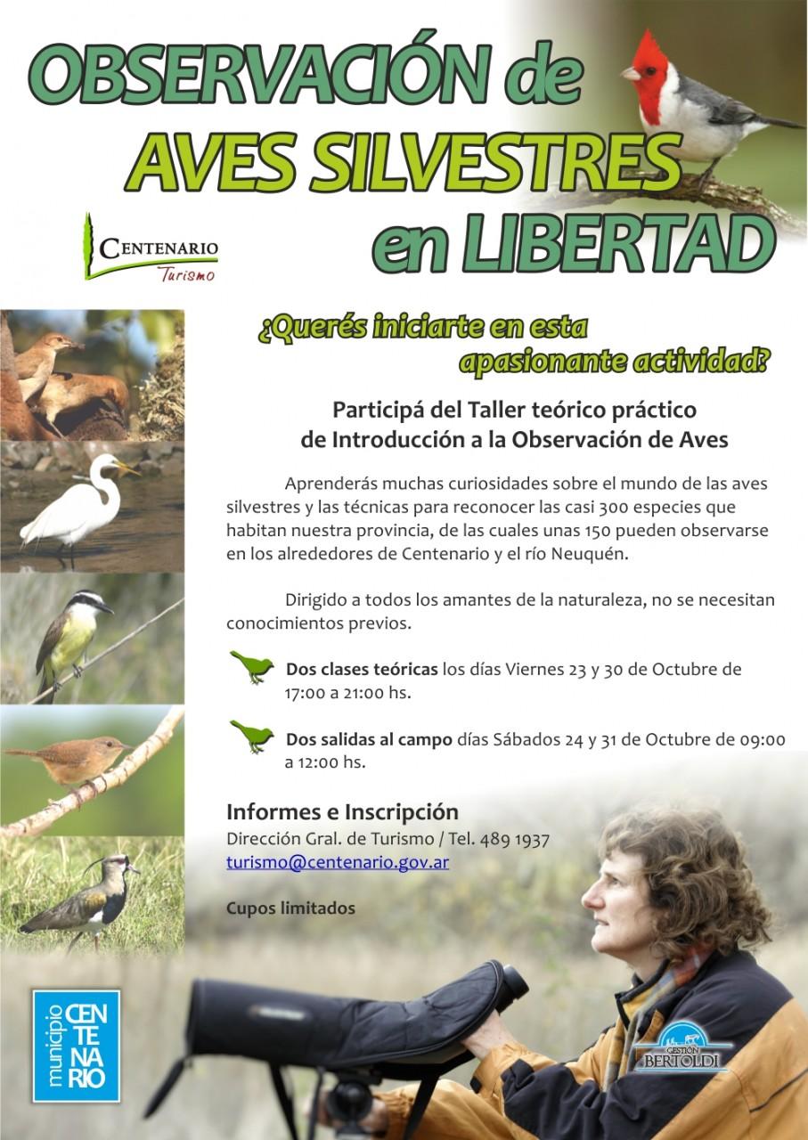 obervacion de aves_ centenario