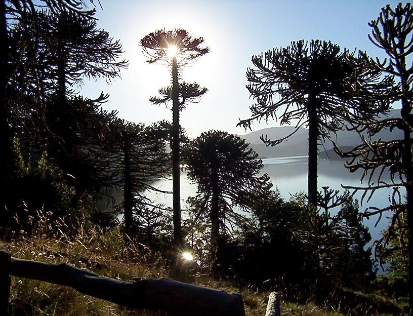 atardecer en el Lago Ñorquinco