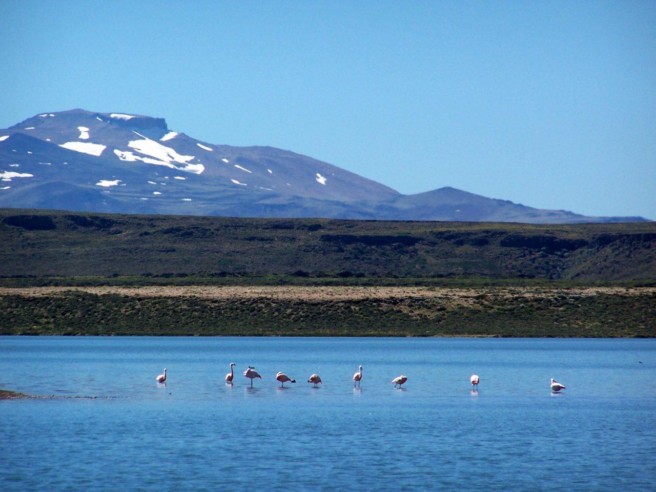 Parque Nacional Laguna Blanca 1