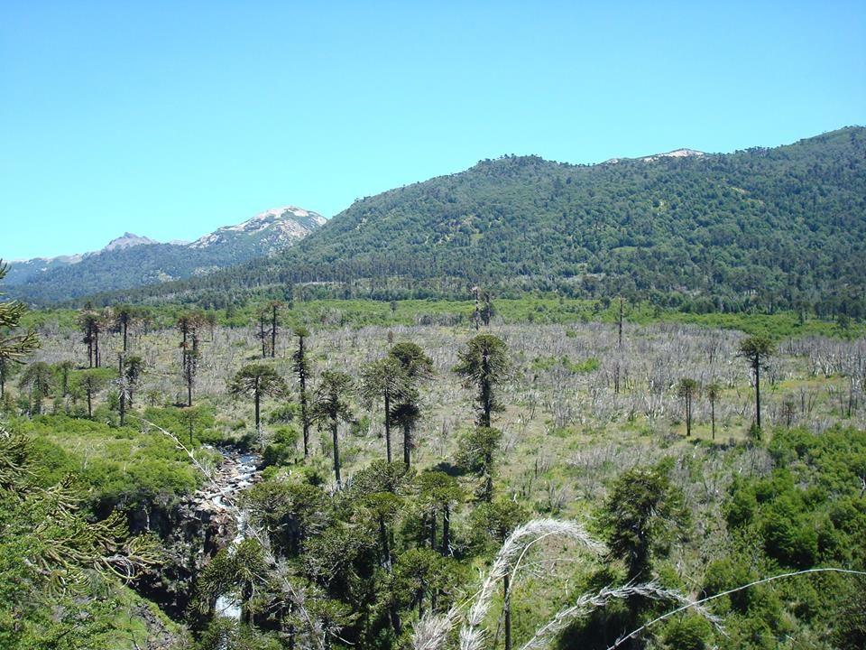 Ñorquinco- cascada Coloco