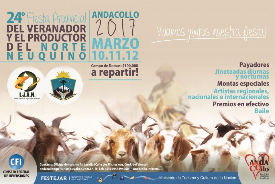 Afiche Fiesta del Veranador