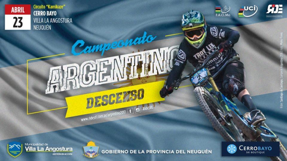 Campeonato ARG Descenso 2017